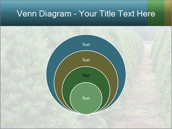 Christmas Tree Farm PowerPoint Template - Slide 34