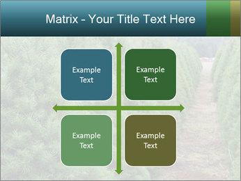 Christmas Tree Farm PowerPoint Template - Slide 37