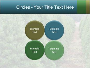 Christmas Tree Farm PowerPoint Template - Slide 38
