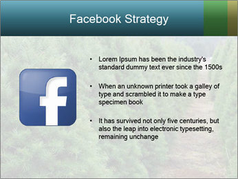 Christmas Tree Farm PowerPoint Template - Slide 6