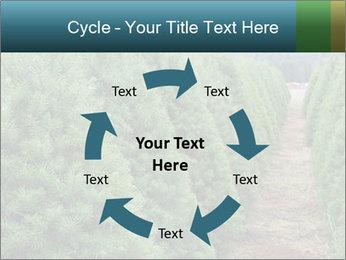 Christmas Tree Farm PowerPoint Template - Slide 62