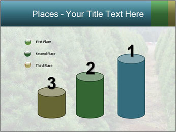 Christmas Tree Farm PowerPoint Template - Slide 65