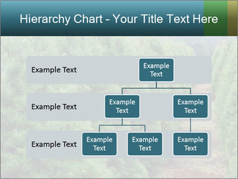 Christmas Tree Farm PowerPoint Template - Slide 67