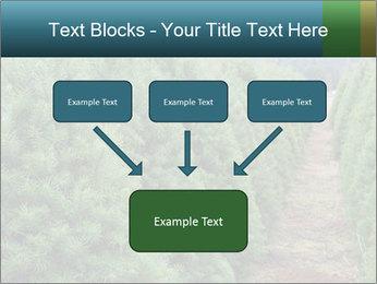 Christmas Tree Farm PowerPoint Template - Slide 70
