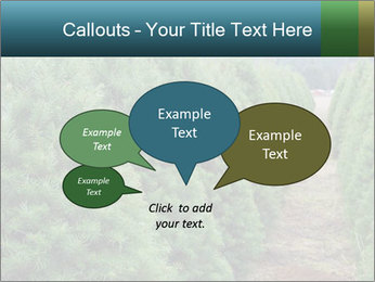 Christmas Tree Farm PowerPoint Template - Slide 73