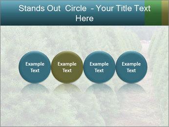Christmas Tree Farm PowerPoint Template - Slide 76