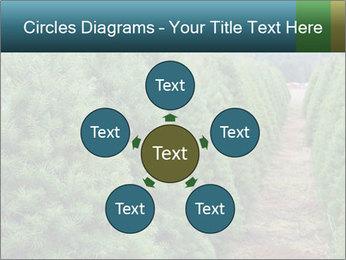 Christmas Tree Farm PowerPoint Template - Slide 78