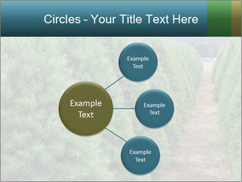 Christmas Tree Farm PowerPoint Template - Slide 79