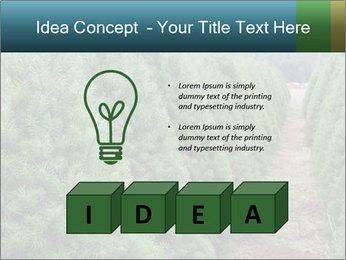 Christmas Tree Farm PowerPoint Template - Slide 80