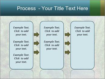 Christmas Tree Farm PowerPoint Template - Slide 86