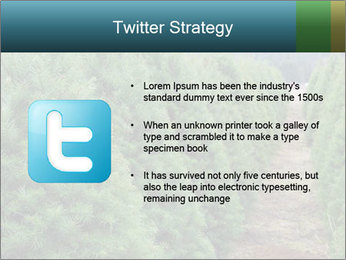Christmas Tree Farm PowerPoint Template - Slide 9