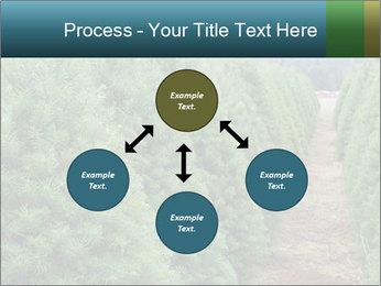 Christmas Tree Farm PowerPoint Template - Slide 91