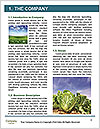 0000087777 Word Template - Page 3