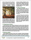 0000087777 Word Templates - Page 4
