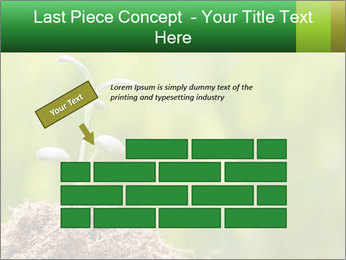 0000087787 PowerPoint Template - Slide 46