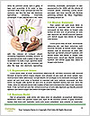 0000087787 Word Templates - Page 4