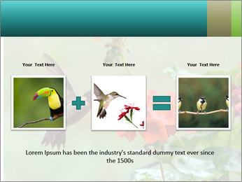 Male ruby-throated PowerPoint Templates - Slide 22