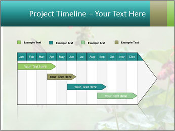 Male ruby-throated PowerPoint Templates - Slide 25