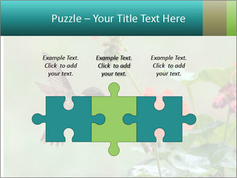 0000087800 PowerPoint Template - Slide 42