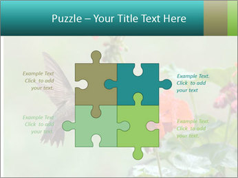 Male ruby-throated PowerPoint Templates - Slide 43