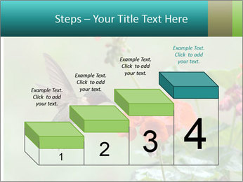 Male ruby-throated PowerPoint Templates - Slide 64
