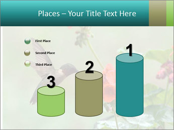 Male ruby-throated PowerPoint Templates - Slide 65