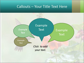 Male ruby-throated PowerPoint Templates - Slide 73