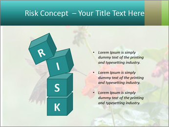 Male ruby-throated PowerPoint Templates - Slide 81
