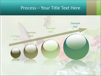 Male ruby-throated PowerPoint Templates - Slide 87