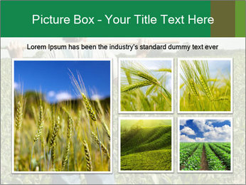 Farmer PowerPoint Template - Slide 19