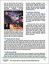 0000087807 Word Template - Page 4