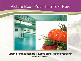 0000087812 PowerPoint Template - Slide 15