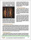 0000087815 Word Template - Page 4