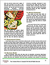 0000087818 Word Template - Page 4