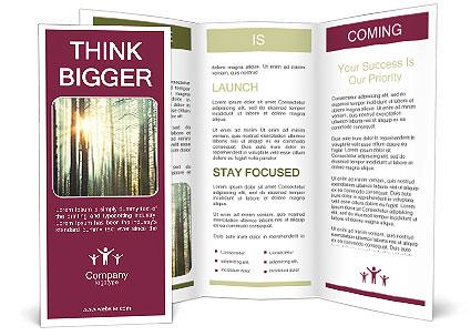 0000087819 Brochure Template