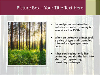 Sunset in the woods PowerPoint Template - Slide 13