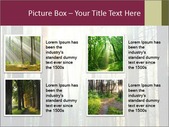 Sunset in the woods PowerPoint Template - Slide 14