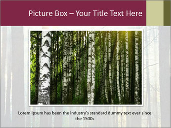 Sunset in the woods PowerPoint Template - Slide 15