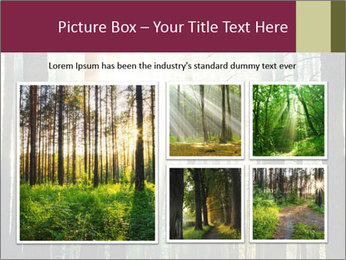 Sunset in the woods PowerPoint Template - Slide 19