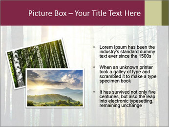 Sunset in the woods PowerPoint Template - Slide 20