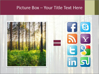 Sunset in the woods PowerPoint Template - Slide 21