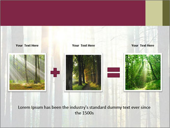 Sunset in the woods PowerPoint Template - Slide 22