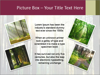 Sunset in the woods PowerPoint Templates - Slide 24