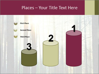 Sunset in the woods PowerPoint Template - Slide 65