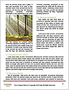 0000087819 Word Template - Page 4