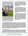 0000087820 Word Templates - Page 4