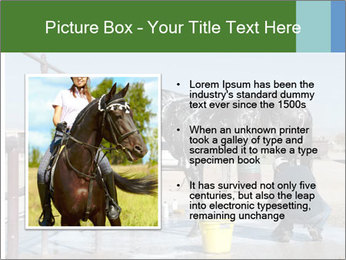 Horse getting a bath PowerPoint Template - Slide 13