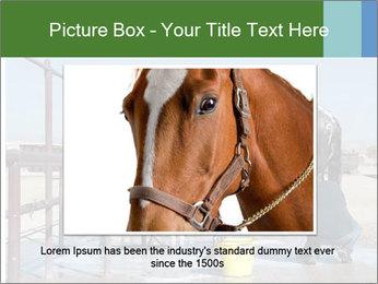 Horse getting a bath PowerPoint Templates - Slide 16