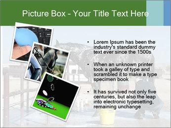 Horse getting a bath PowerPoint Templates - Slide 17