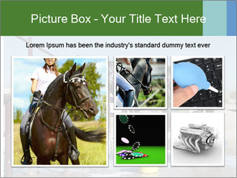 Horse getting a bath PowerPoint Template - Slide 19